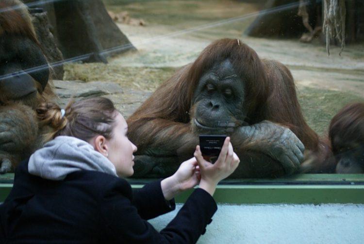 30 самых смешных фото на разные темы