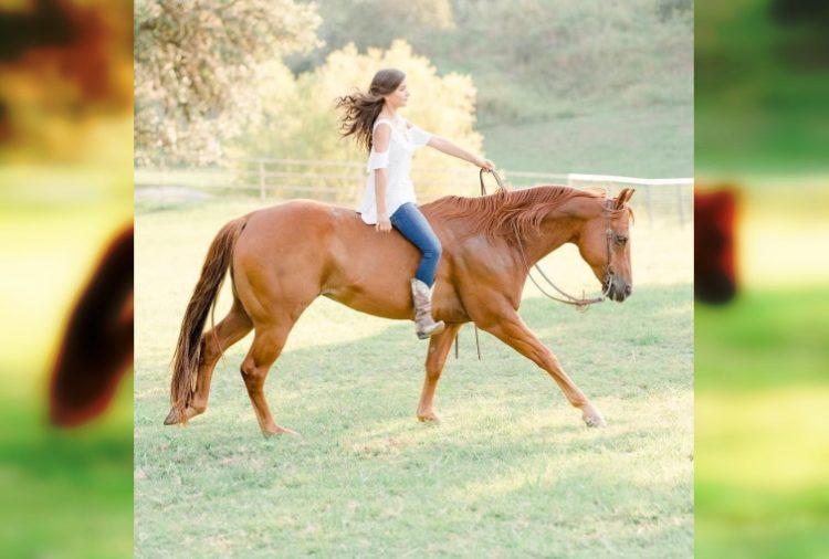 Отважные наездницы: 30 невероятно красивых фото девушек с лошадьми